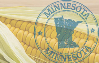 Minnesota-Confronts-Monsanto-with-New-GMO-Labeling-Bill